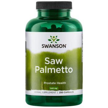 Saw Palmetto (Sägepalme)