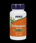 Echinacea Purpurea Root 100 caps