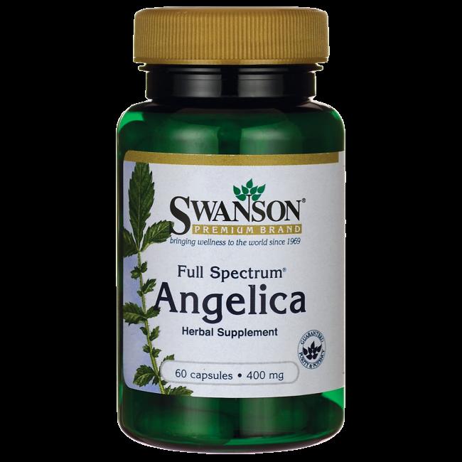 Broad-Spectrum Angelica Root