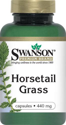 Horsetail Grass
