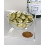 Full Spectrum Olive Leaf