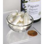 Papain Papaya Enzyme