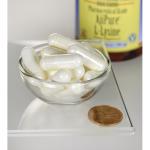Ajipure L-Lysine, pharmaceutical class